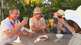 Mature friends celebrating stock video