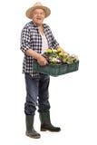 Mature gardener holding glowers stock photos