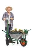 Mature gardener posing behind wheelbarrow stock image