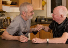 Mature gay couple having wine Stock Images