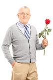 Mature gentleman holding a red rose Royalty Free Stock Photos
