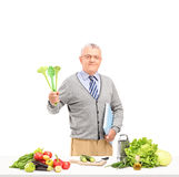 Mature gentleman posing with spoons and a cookbook while prepari Royalty Free Stock Images