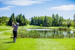 Mature Golfer on a Golf Course Royalty Free Stock Image