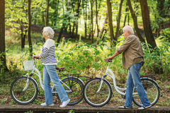 Mature husband and wife riding bikes in nature Royalty Free Stock Image