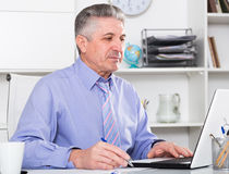 Mature lawyer preparing documents. Mature lawyer preparing important documents on computer at his office Royalty Free Stock Images