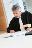 Mature lawyer reading judge's report Stock Photography