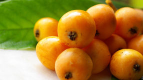 Free Mature Loquats. Royalty Free Stock Images - 5383669