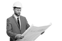 Mature male architect with a blueprint Royalty Free Stock Images
