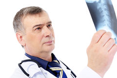 Mature male doctor looking on the X-ray Stock Image