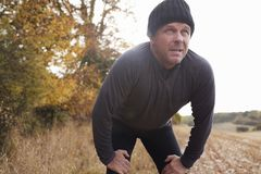 Mature Male Runner Pausing For Breath During Exercise In Woods Stock Photography