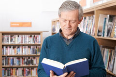 Mature Male Student Studying In Library Royalty Free Stock Photography