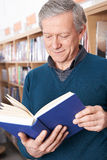 Mature Male Student Studying In Library. Mature Male Student Studying Book In Library Stock Images