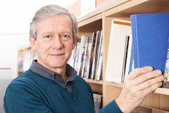 Portrait Of Mature Male Student Studying In Library. Mature Male Student Studying In Library Stock Images