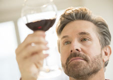 Mature Man Analyzing Glass Of Red Wine Royalty Free Stock Photo