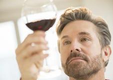Mature Man Analyzing Glass Of Red Wine Royalty Free Stock Photo