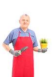 Mature man with apron holding a plant and a spade Stock Photo