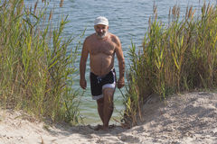 Mature man in a baseball cap and bathing shorts. Passes between the reeds of a lake on a sandy beach Royalty Free Stock Photography