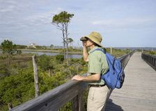 Man Birdwatching at Big Lagoon State Park in Florida royalty free stock photos