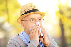 Mature man blowing his nose in tissue because of being ill outsi Stock Image