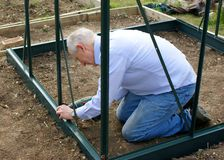 Mature man building greenhouse Stock Images