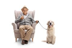 Mature man with a cup and a labrador retriever dog sitting in an Royalty Free Stock Photo