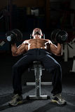Mature Man Doing Dumbbell Incline Bench Press Workout Royalty Free Stock Image