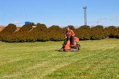Mature man driving grass cutter. In a sunny day Stock Image