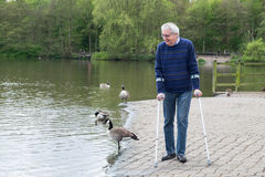 Mature man enjoying walk by lake, walking with crutches Royalty Free Stock Photos