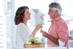 Mature man giving flower to happy woman Royalty Free Stock Photo