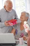 Mature man giving present to wife Royalty Free Stock Photos