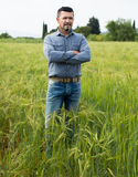 Mature man among green grass Royalty Free Stock Image