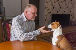 Mature man having conversation with basenji dog Royalty Free Stock Photography