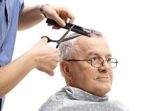 Mature man having a haircut. On white background stock images