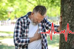Mature man having heart attack. In park royalty free stock image