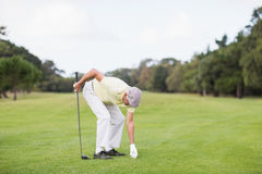 Mature man holding golf club while bending. On grassy field Royalty Free Stock Images