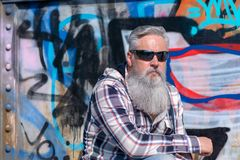 Mature man with long grey beard wearing sunglasses. Against painted wall on sunny day Royalty Free Stock Photos