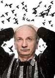Mature man looking up on flying birds. Mature man looking up on sky with flying birds Royalty Free Stock Photography