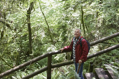 Mature Man Looking Up In Forest Stock Photo