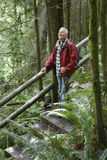 Mature Man Looking Up In Forest Stock Photography