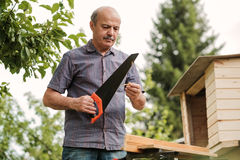 Mature man with mustache holding a saw in hand. Sawing logs, harvesting firewood Royalty Free Stock Photo