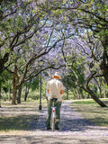 Mature man painting on canvas in a park. 19, 2015: SEVILLA, SPAIN - FEBRUARY 12, 2015: Mature man painting on canvas in a park. May spring in the beautiful city Royalty Free Stock Photos
