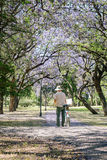 Mature man painting on canvas in a park Stock Photos