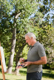 Mature man painting in the garden Stock Photography