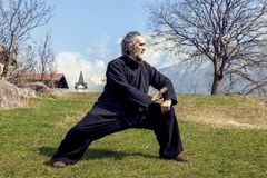 Mature man practicing Tai Chi discipline outdoors royalty free stock photography