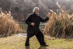 Mature man practicing Tai Chi discipline outdoors. In a lake park on a winter day royalty free stock images
