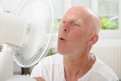 Mature man refreshed with a fan. In his home Stock Images