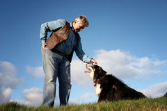 Mature man and a sheep dog Stock Photos