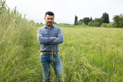 Mature man standing in green wheat field Stock Image