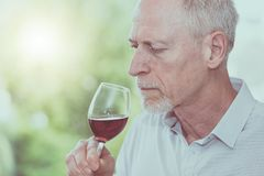 Mature man tasting red wine, light effect. Senior man tasting red wine, light effect Royalty Free Stock Image