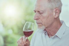 Mature man tasting red wine, light effect Royalty Free Stock Image
